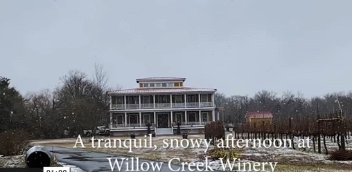 Tranquility Tuesday #49 Willow Creek