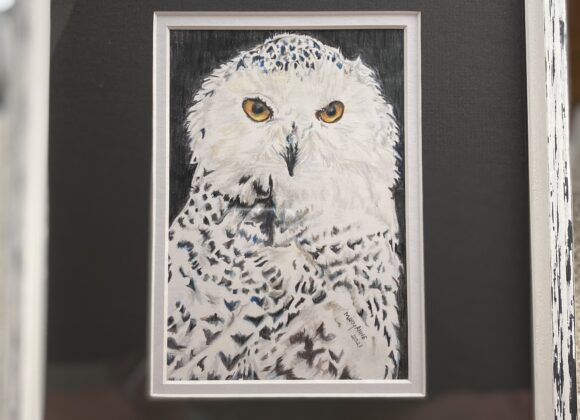 #5 – Snowy Owl – MaryAnne Raker – Adult